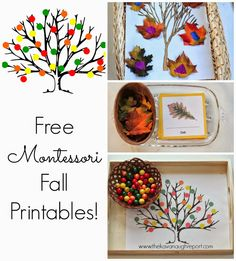 Free Montessori Inspired Fall Printables - perfect for homeschool, preschool or tot school, these printables are fun for many children!