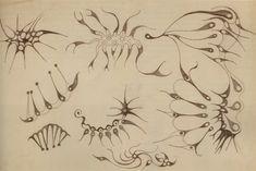scientific sea drawings - Google Search