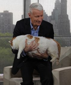 Anderson Cooper And The 39 Pound Cat