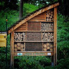 Menina! Paris é tão chique que tem até hotel para abelhas. Pena que não deu pra gente fazer um tour dentro dele estava lotado . #jardinbotanique #jardinbotanico #botanical #botanicalgarden #paris #France #frança #europa #eurotrip #turistando #ferias #viagem #viaje #viajar #trip #travel #fleur #flower #flores #nature #bee #abeille