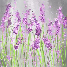 Lavender Blossoms - Lavender Field Painting Canvas Print by Lourry Legarde. All canvas prints are professionally printed, assembled, and shipped within 3 - 4 business days and delivered ready-to-hang… Diy Painting, Painting & Drawing, Easy Flower Painting, Flower Painting Canvas, Lavendar Painting, Easy Flowers To Paint, Creative Painting Ideas, Back Painting, Painting Tools
