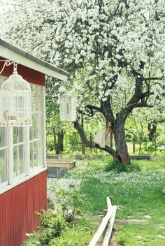 One of my all-time favorite hobbies is having a garden each year. Swedish Cottage, Red Cottage, Swedish House, Cottage Homes, Garden Cottage, Home And Garden, Scandinavian Garden, Narcisse, Into The West