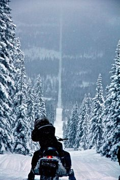 This is the border between Norway and Sweden. Riding a snowmobile for fun is illegal in Norway, but legal in Sweden. Oh The Places You'll Go, Places To Travel, Voyage Suede, Voyager Loin, Lappland, Lofoten, Winter Scenes, Oslo, Wonders Of The World