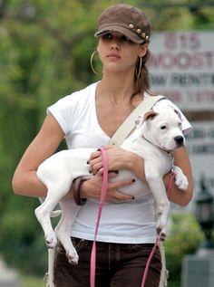 Jessica Alba and her pit bull.