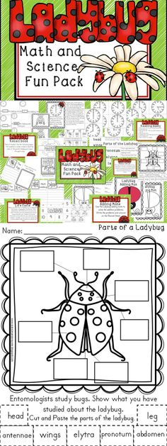 Ladybug Math and Science Fun pack.  Time and retell with The Grouchy Ladybug activities as well as ladybug body parts, life cycle, addition and game included. K-1 #grouchyladybug #ladybug