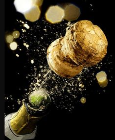 Love the sound of Champagne corks popping. Happy New Year 2016, Happy New Year Everyone, Champagne Corks, Champagne Quotes, Coffee And Cigarettes, Auld Lang Syne, Quotes About New Year, New Year Celebration, Nouvel An