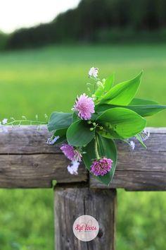 kwiaty polne, las