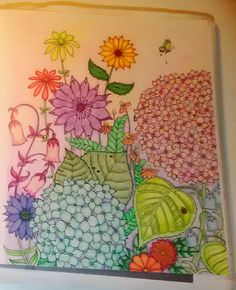 Ivy And The Inky Butterfly Joanna Basford Adult Coloring Prismacolor Hydrangea