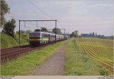 Simplon Orient Express, Brussels, Railroad Tracks, Venice, Vineyard, Train, Outdoor, Outdoors, Venice Italy