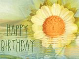 Thinking of you  on your birthday...    of the years,  smiles,  and special memories  between us...    and wishing you  a beautiful day.    Happy Birthday