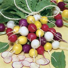 Parks Beauty Blend Radish Seeds- 4-5 hrs sun, 22-32 days. Cool weather, plant spring and fall. Sow multiple crops 2 weeks apart so there's always a harvest. Eat roots or greens