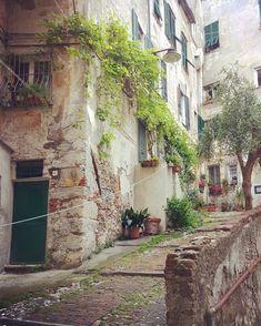 "Elena sanoo Instagramissa: ""Quartiere del Carmine, Genova"""