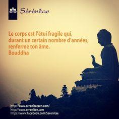 Citation Bouddha