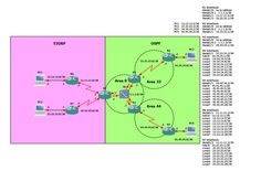IPv4; EIGRP; OSPFv2; Frame Relay; full mesh; multipoint subinterfaces; manual route summarization; route redistribution;  ABR; ASBR.