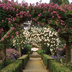 Mottisfont Abbey Garden, Hampshire, UK