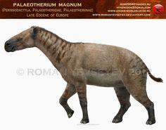 Paleotherium by RomanYevseyev on DeviantArt