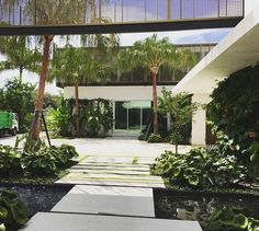 #landscapephotography #landscapearchitecture @_saota #architecture #pinetreedrive #miamibeach