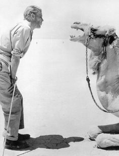 Peter O'Toole on the set of Lawrence of Arabia.