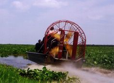Bill's Airboat Adventures on the St. Johns River, Sanford, FL---to do with my lover!