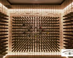 Contemporary Wine Cellar Design, Pictures, Remodel, Decor and Ideas - page 2