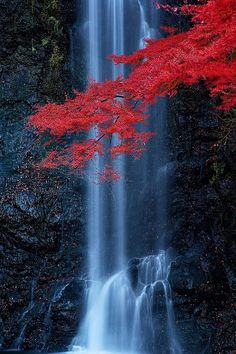Minoo waterfall in Osaka, Japan