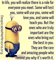 "Minion Quotes Love are cute captivating and funny. So scroll down and keep reading these ""Top Minion Quotes Love - Hilarious Humor Pictures Clean & Famous"". Me Quotes, Funny Quotes, Qoutes, Funny Humor, Funny Friend Quotes, Quotes Images, Work Quotes, Minions Love, Funny Minion"