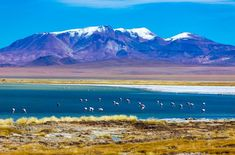 Salar de Atacama, Chile   Sandboard San Pedro - Lonely Planet