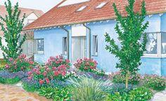 Dieser Vorgarten wird durch geschwungene Wege mit grauem Splittbelag in mehrere, kleine Beete unterteilt, in denen Rosen, Katzenminze und Storchschnabel Platz finden