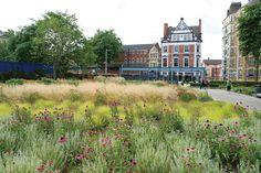 "Piet Oudolf's New Garden Book, ""Plantings"" Photos   Architectural Digest"