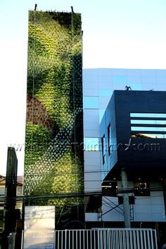 Muros verdes sistema Ignacio Solano Cochabamba http://www.paisajismourbano.com/wp-content/uploads/2013/04/Muros-verdes-sistema-Ignacio-Solano-Cochabamba.jpg