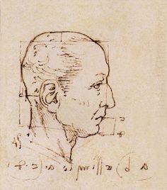 Another study of the proportion of the head, Leonardo da Vinci