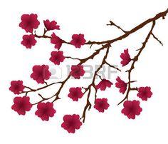 vecteur fleur branche avec des fleurs rouges photo