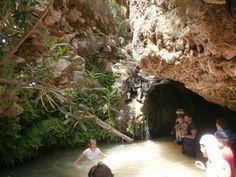Jungle of Rhodes - Archangelos - Beoordelingen van Jungle of Rhodes - TripAdvisor Small Lake, The Locals, Trip Advisor, Water, Travel, Rhodes, Water Water, Aqua, Viajes
