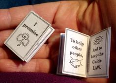 Guide mini Promise book
