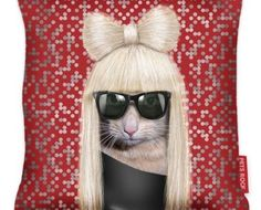 [ lady catcat ]