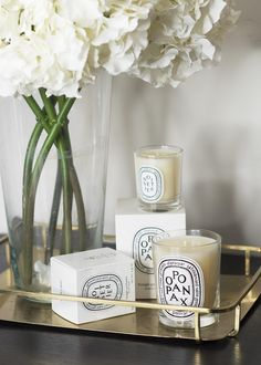 Diptyque Winter Candle Duo http://www.georgietoms.com/diptyque-winter-candle-duo/