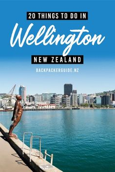 20 Incredible Things to Do in Wellington - NZ Pocket Guide New Zealand Travel Guide New Zealand Itinerary, New Zealand Travel Guide, World Travel Guide, Travel Guides, Wellington City, Wellington New Zealand, Beautiful Places To Visit, Cool Places To Visit, Travel