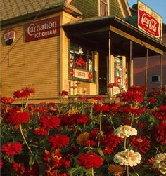 Zinnias, an old mom and pop store, small town life. Old Country Stores, Yesterday And Today, Thats The Way, General Store, Built In Storage, The Good Old Days, Country Living, Country Life, Coca Cola