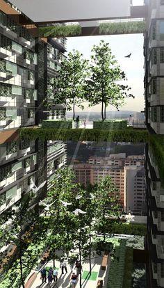 The Future Ecologic