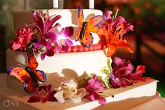 Destination Wedding at @Elizabeth Osuna Park with a brightly coloured butterfly theme wedding cake.  Mexico wedding photographers Del Sol Photography