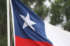 bandera Chilena Rodeo, Flag, Outdoor Decor, Home Decor, Chilean Flag, Patriots, Cute, Room Decor, Rodeo Life