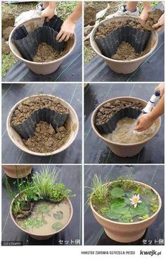 pond in a pot - wonder if this would work...