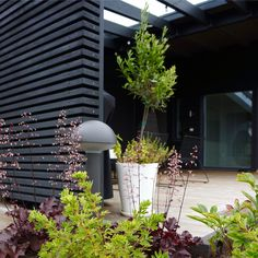 secret Garden room How To Grow Secret Garden Idea In Your Yard 21 Modern Landscape Design, Modern Garden Design, Landscape Plans, Modern Landscaping, Landscaping Tips, Garden Landscaping, Contemporary Landscape, Modern Contemporary, Scandinavian Garden