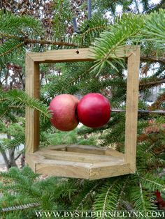 Under The Table and Dreaming: Make a Rustic Fresh Fruit Bird Feeder for Your Feathered Friends