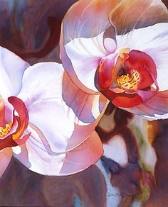 Gallery of Watercolor Paintings by Artist Sandra Bray