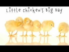 Little Chicken's Big Day by Katie Davis  Recommended for preschool kids.  Check it out from the Geneva Public Library!  EY DAVIS