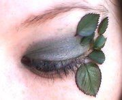 Makeup Inspirations: Forest Nymph