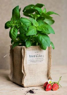 ptits sacs à potager - DIY Garden Projects, Sewing Projects, Projects To Try, House Plants Decor, Plant Decor, Kids Crafts, Diy And Crafts, Coffee Bean Bags, Modern Plant Stand