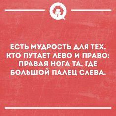 Smart Humor, Blue Bus, Jokes, Lol, Funny, Meme, Posters, Chistes, Memes