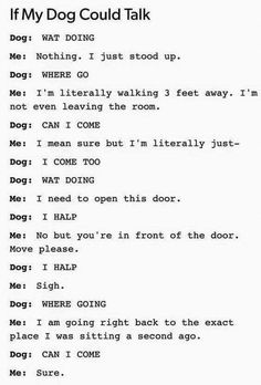 I might be a dog
